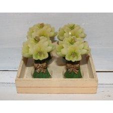 4 velas flores crema 5x8 cms