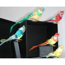 6 Papagallos con pinza. Colores surtidos