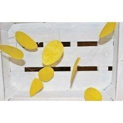 Guirnalda de huevos de papel, amarillos