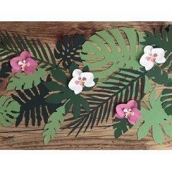 Set de 21 hojas tropicales-hojas de palmera