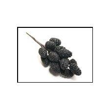 6 Picks glitter negro 18 cms