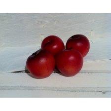 12 Manzanas rojas 5x5 cms