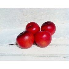 12 Manzanas rojas 5 cms