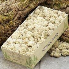 Musgo natural. 500 Grs