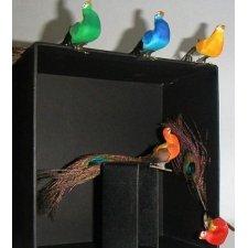 12 Pavos reales con pinza. Varios colores