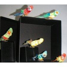 12 Papagallos con pinza. Colores surtidos
