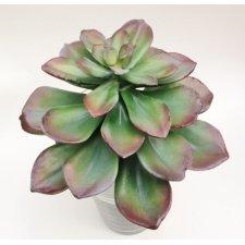 Siempre viva-suculenta-cactus artificial, 20x18 cms