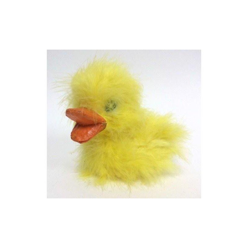 Pato con plumas amarillas