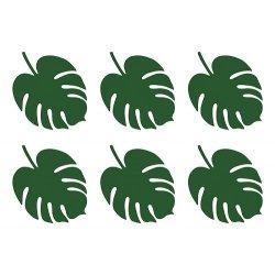 6 hojas tropicales-hojas de monstera.