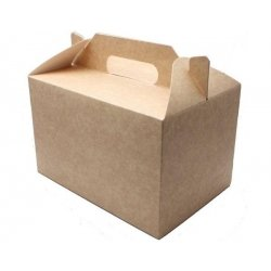 10 Cajas picnic kraft. XL